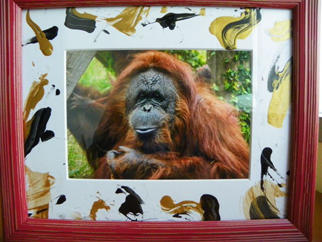 orangutan-photo-in-frame.jpg