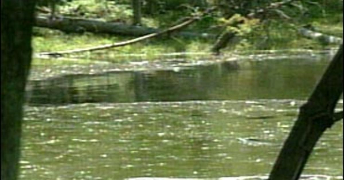 Pond drained in anthrax clue hunt cbs news for Local pond supplies
