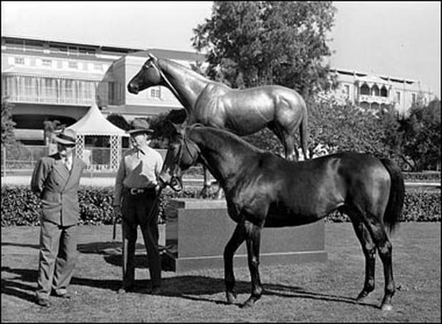 Seabiscuit Photo 9 Pictures Cbs News