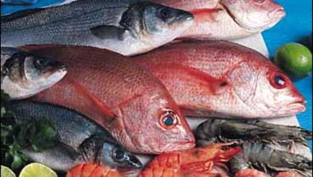Study more mercury in lake fish cbs news for What fish has the most mercury
