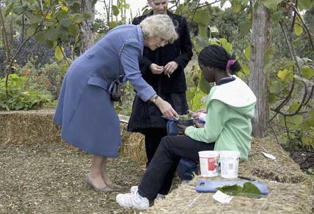 Children Meet Royalty