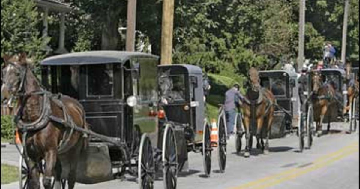 Where are Amish babies born?