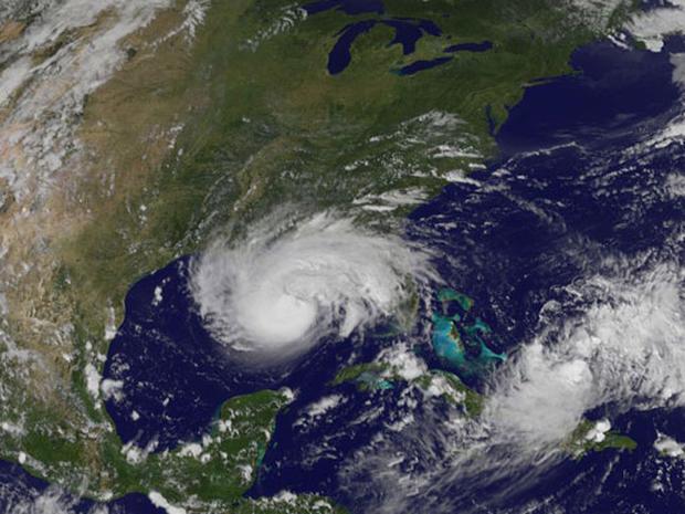 Gulf Coast Flees