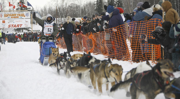 how to train for a dog sled race