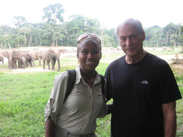 Forest Elephants