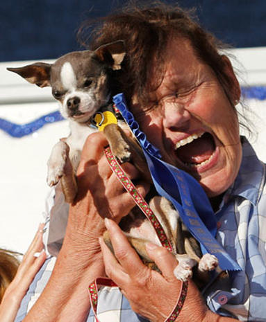 Ugliest Dog Crowned