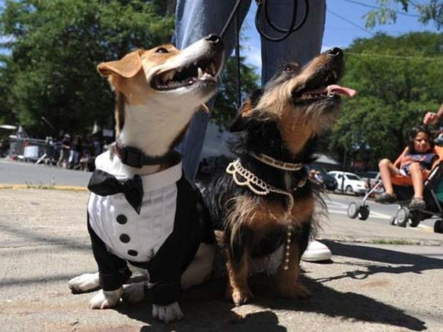 Chelsea's Wedding Preps
