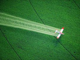 crop duster, dusting, pesticides, herbicides