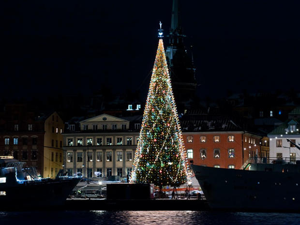 Christmas Trees Around the World