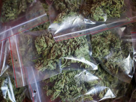 Crowds to gather in Colo. to celebrate 420, push for marijuana legalization
