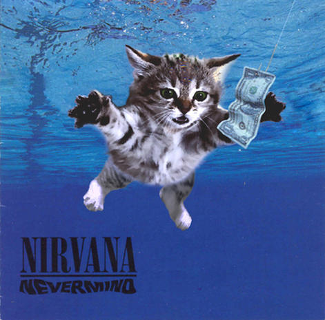 The Kitten Covers: Albums re-imagined with cats!