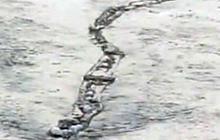 Icelandic river monster caught on tape?