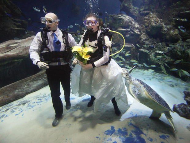 Wild and wacky weddings