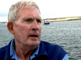 Capt. David Murdoch, who operates boat tours on the Cape Cod shore, said thousands of seals could be attracting sharks to the area.