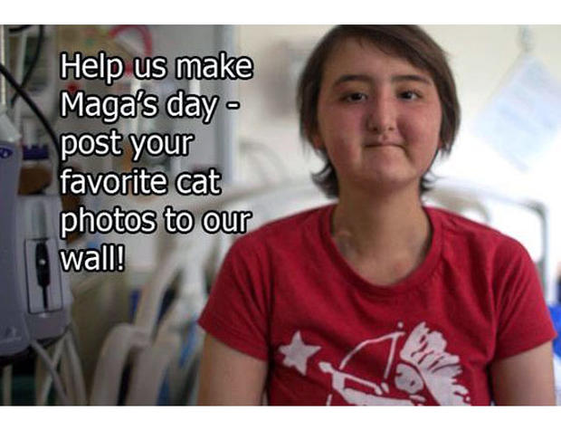 maga, cat immersion project, seattle children's hospital