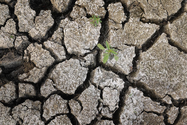 Severe U.S. drought by the numbers