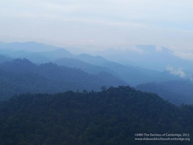 Duchess Kate's personal Borneo photos
