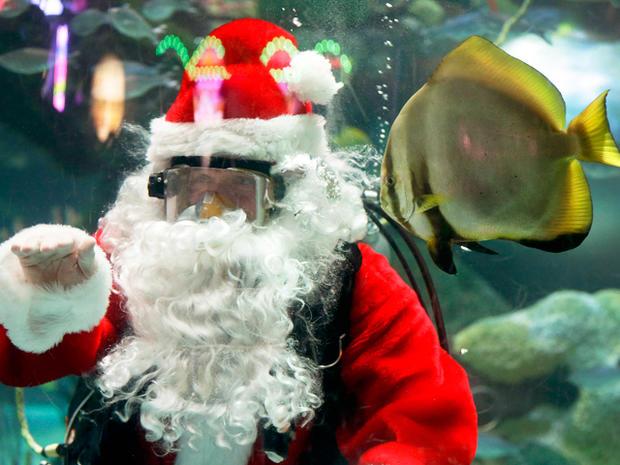 Underwater Santa Claus