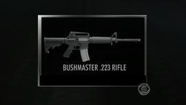 A .223 assault rifle