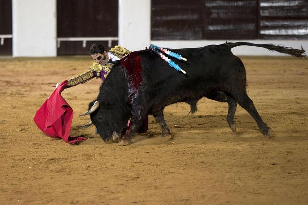 Stunning photos of Spain's bullfighters