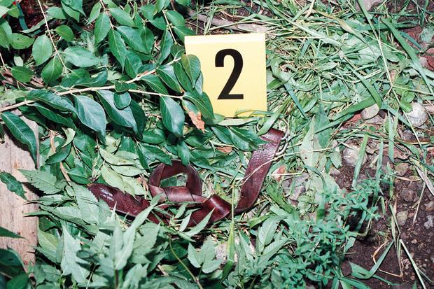 "Angel Maturino Resendiz: The ""Railroad Killer"""