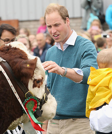 Prince William talks with the animals