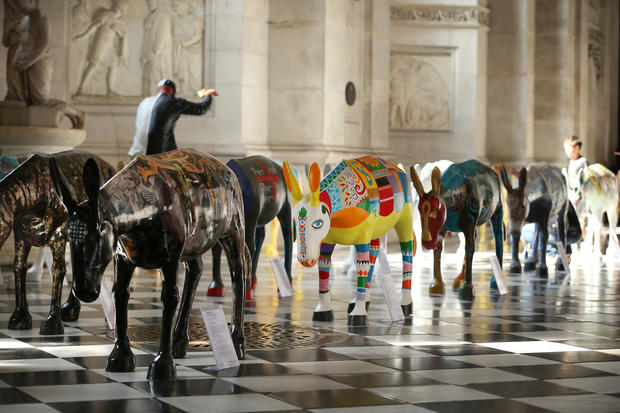Painted donkeys arrive in London