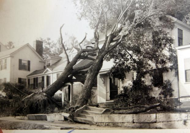 The Great New England Hurricane
