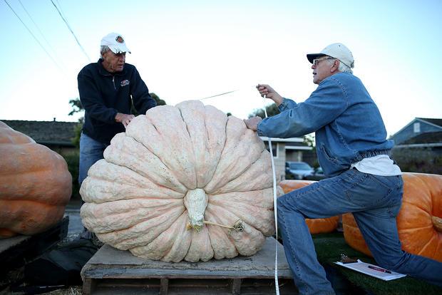 All hail the great pumpkin