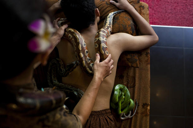 A slithering spa experience