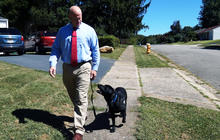 Service dog helps veteran reintegrate into day-to-day life