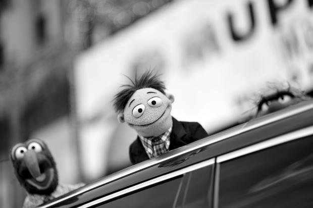 Muppets hit the red carpet