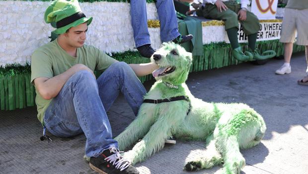 st-patricks-day-green-620-141498459.jpg