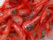 seafood-at-tokyo-fish-market.jpg
