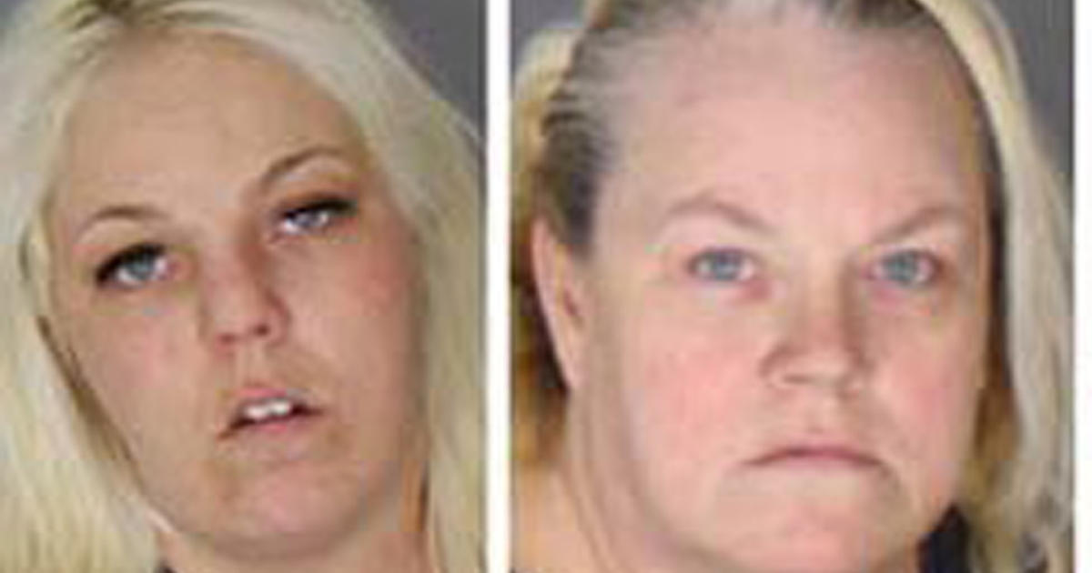 Shoplifting case in Michigan?