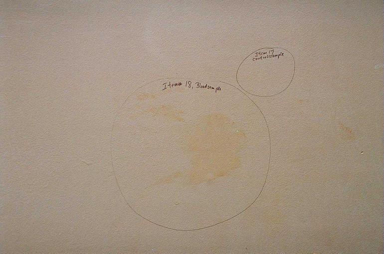 weidner-handprint.jpg
