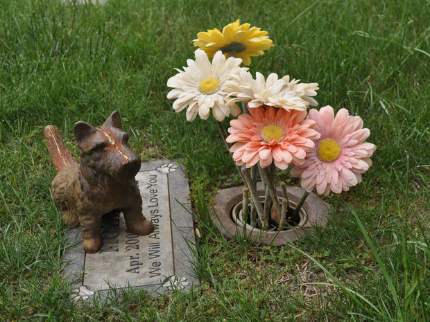 A final home for beloved pets