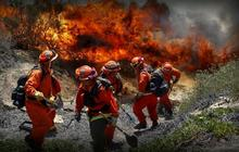 California on offense in response to wildfires