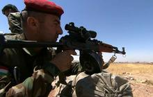 Iraqi Kurds plan vote for independence