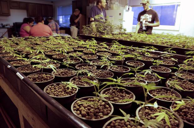 Recreational pot dispensaries open in Washington