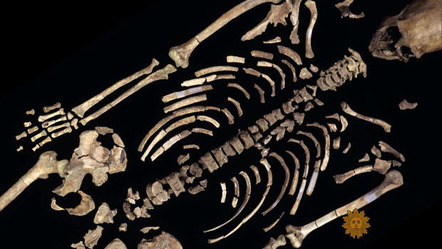 肯纳威克骨架-620.jpg