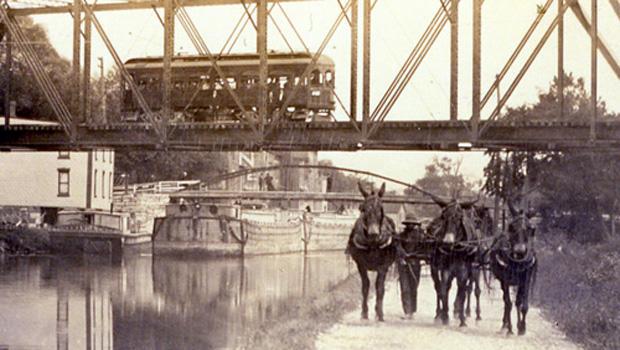 伊利运河骡子 - 在 - 里昂 -  620.jpg