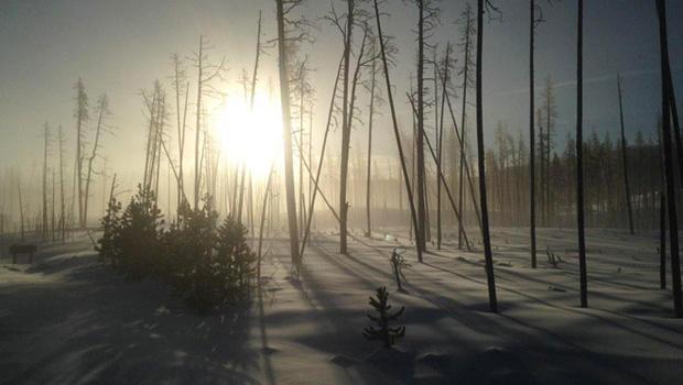 黄石在冬季-620.jpg