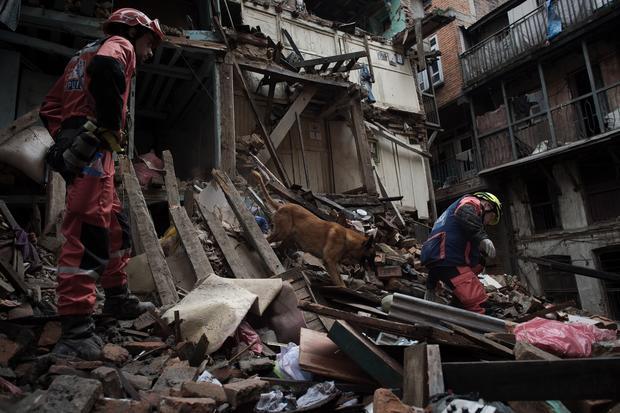 Hero dogs of Nepal