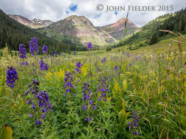 John Fielder's Colorado
