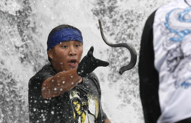 It's raining fish monsters in Alaska
