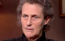 Temple Grandin: Understanding autism