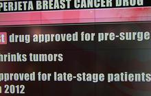 """FDA-approved """"historic"""" cancer drug shrinks tumors"""