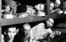 Holocaust: History's darkest chapter even darker