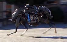 "Watch: Boston Dynamics' ""wild"" new robot"